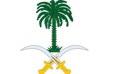 The Goverment of Saudi Arabia
